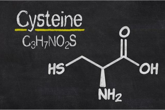 Schwefelhaltige Aminosäuren chemische Struktur