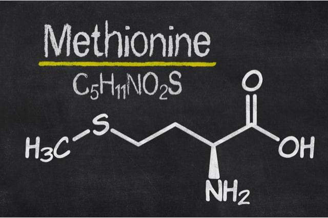 Methionin gehört zu den schwefelhaltigen Aminosäuren