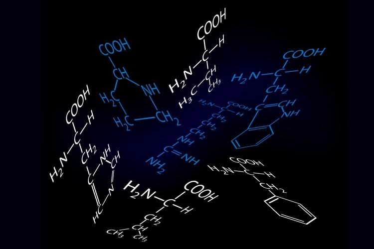 Aminosäuren, Die Proteinogen Sind