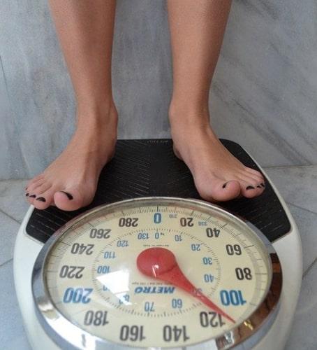 healthy nutrition rich in amino acids
