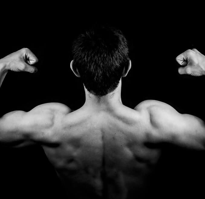 2 Phasen zur Abnahme und zum Muskelaufbau