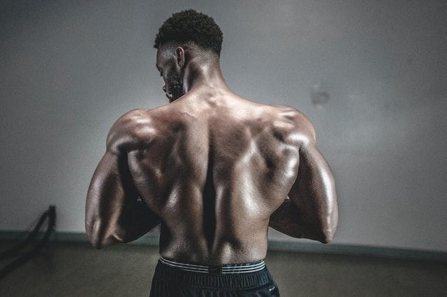 Sinnvolles Muskelaufbaupräparat und seine Wirkungen