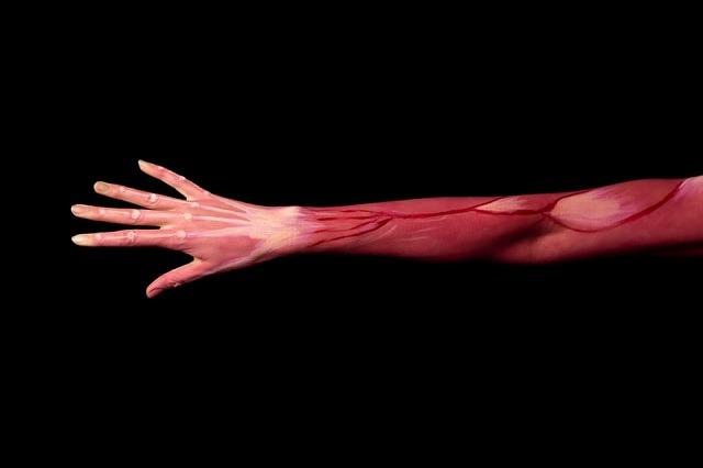 Schultergelenk trainieren und Armmuskulatur aufbauen