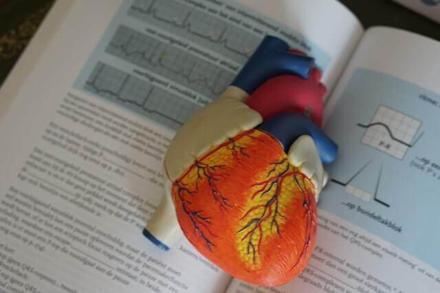 Sporttherapie nach Herzinfarkt